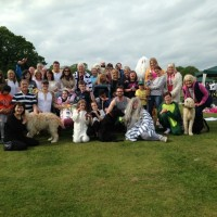 LS29 raise over £2,000 for Martin House Children's Hospice